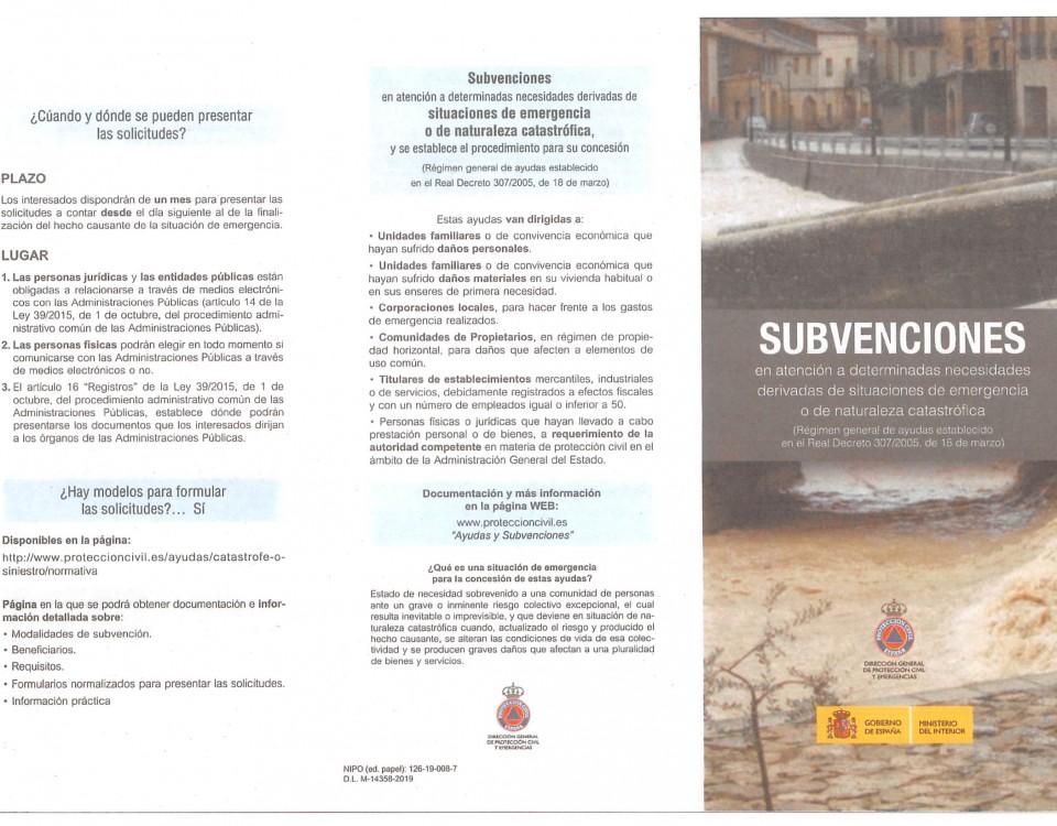 TRIPTICO AXUDAS EMERXENCIA RD 3072005